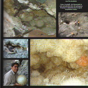 Mineralientage_Muenchen_2009_5