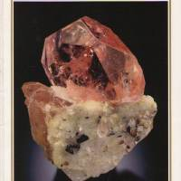 Mineralogical Record Magazine 2005