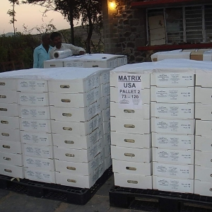 matrix_india_minerals_packing_shipping-38