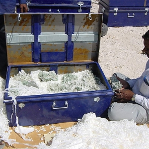 matrix_india_minerals_packing_shipping-7