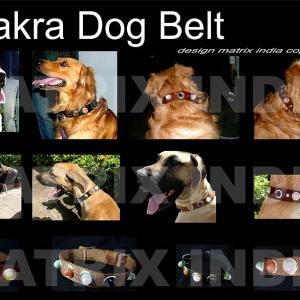 chakra-dog-belt