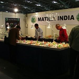 matrix_india_minerals_shows-12